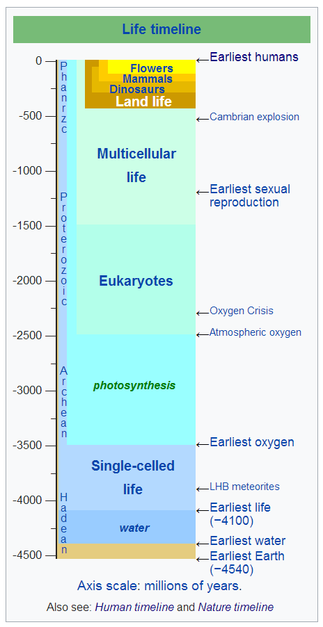 Life on Earth Timeline