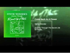 (Stevie Wonder + Syreeta Wright = Come Back As A Flower)